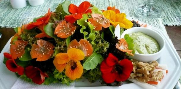 cvetia_za_dekoracia_na_iastia