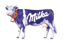 milka_krava