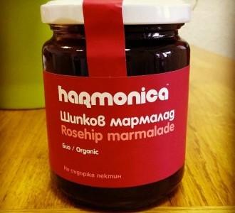 shipkov_marmalad_harmonica