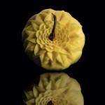 карвинг на плодове веселина славчева
