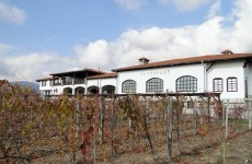 hotel-vinarska-izba-starosel