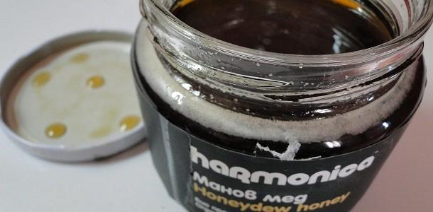 Manov_med_harmonica