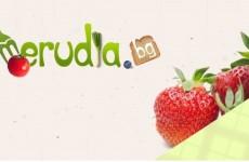 merudia.bg